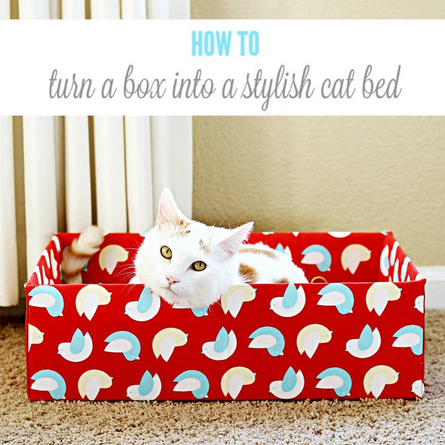 Super Simple Box Bed for Cats